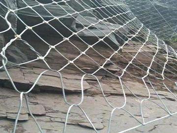柔性主动防护网(1)